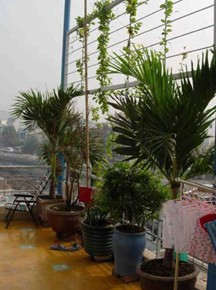 sonja_spruit_vietnam_housing_end